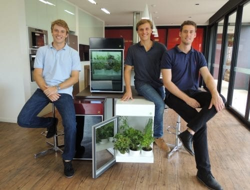cultivo caseiro de alimentos orgânicos