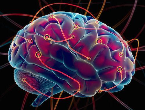 Cérebro dor