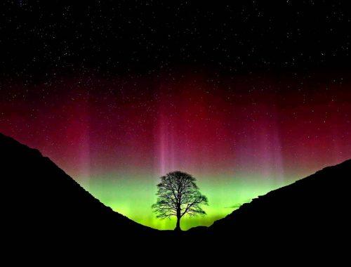 fotos fenômeno aurora boreal