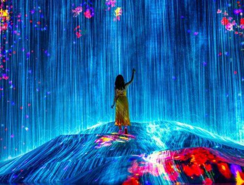 Arte imersiva são paulo MIS Experience portal mundo