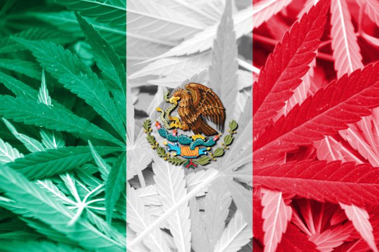 Legalização da maconha México