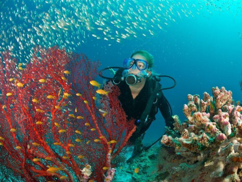 onu busca projetos para combater poluição nos oceanos