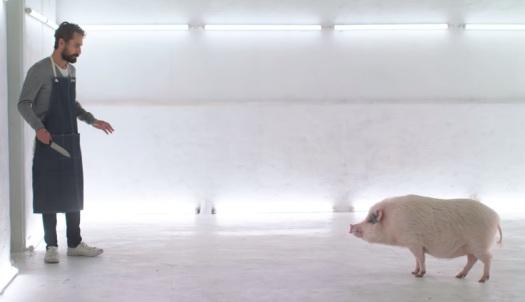curta-metragem casa de carne matar nossas comidas