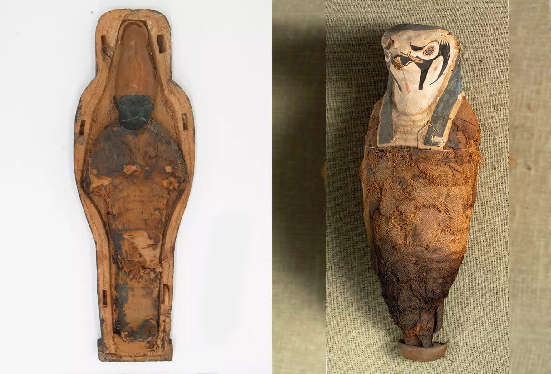 múmias egípcias não eram humanas portal mundo